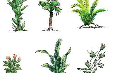 Hand drawn shrubs download