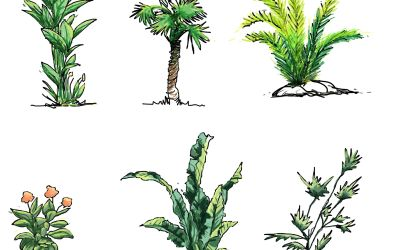 Hand drawn shrubs download