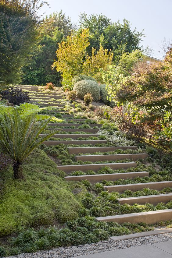landscaping a sloped site