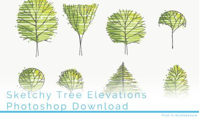 Hand drawn tree elevations – Set 7