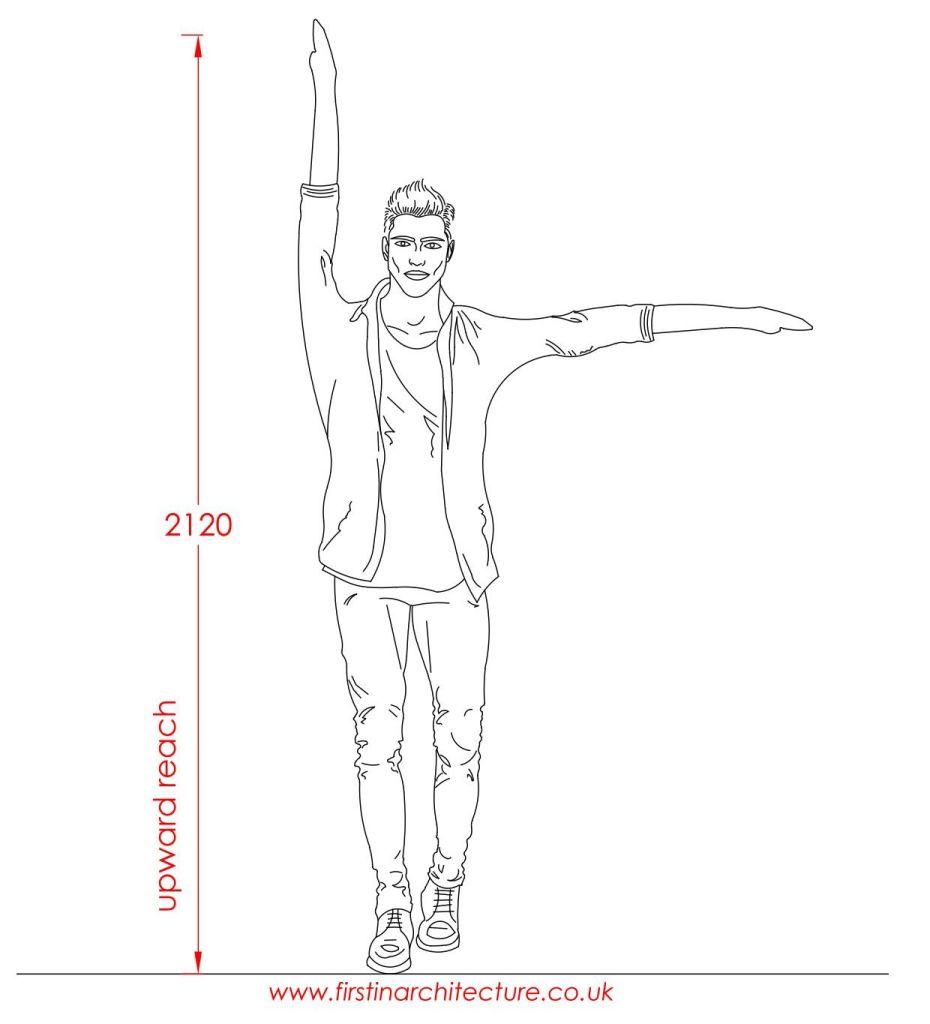 12 Upward reach of average man