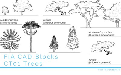 CAD Blocks Trees CT01