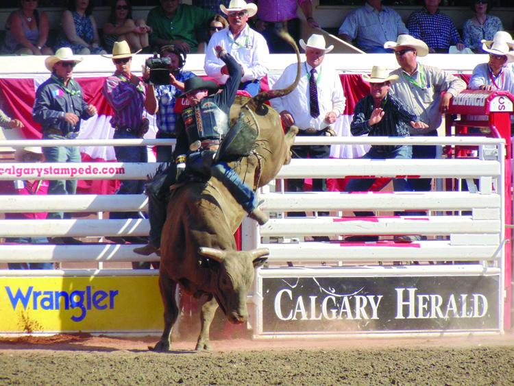 Bull Rider.