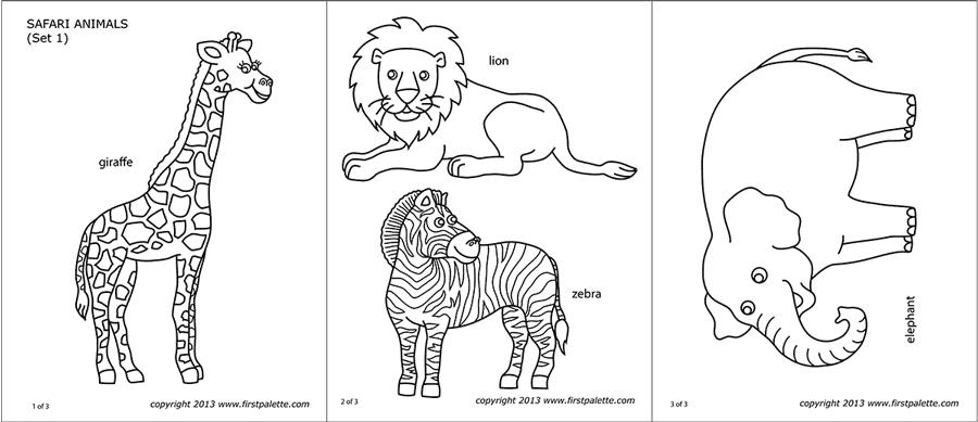 Safari or African Savanna Animals   Free Printable ...   free printable coloring pages safari animals