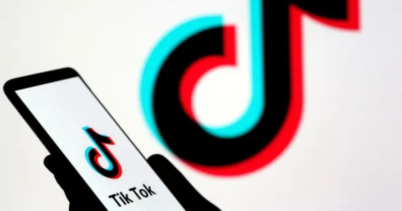 Indian government bans TikTok: From Manjul Khattar to Avneet Kaur, a list of celebs who shot to fame on the platform 1