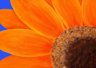 """Picture of a flower for """"Flower Series"""" in Acrylics"""
