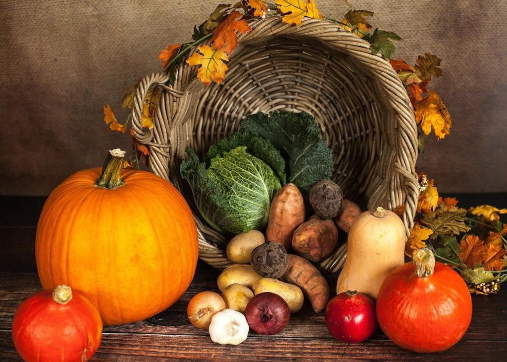 photo of fall vegetables on display