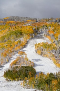 (photo: Beaver Creek)