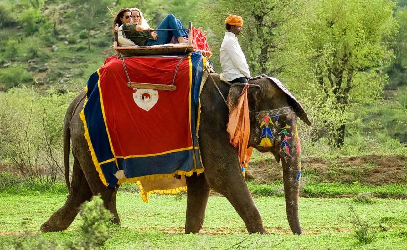 Idukki Kerala Group Tour Package