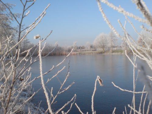 Teich kammermann im winter fischereiverein rietberg e v for Teich winter