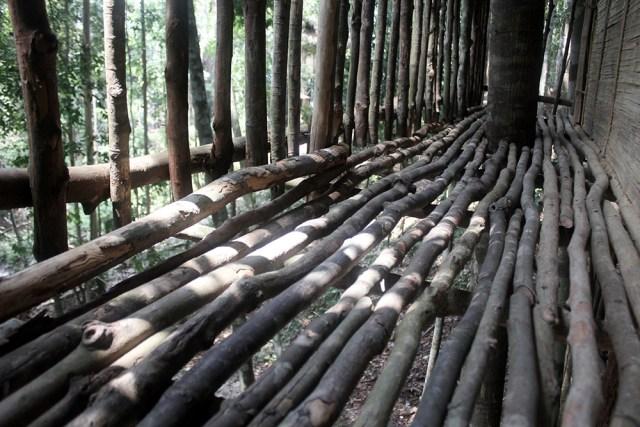 古来雨林树屋民宿