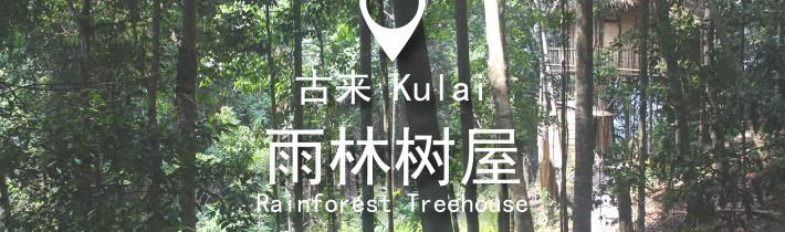 古来 | 一起来住树上吧!雨林树屋Rainforest Tree House Homestay