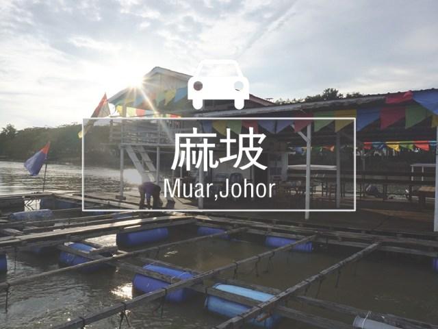 麻坡体验游_环球日记