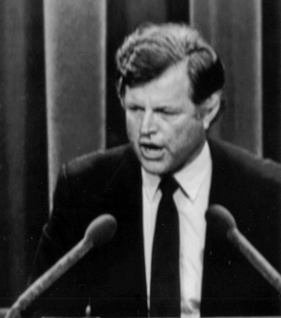 Remembering Ted Kennedy  Fishbird