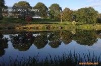 Furnace Brook Fishery Lakes