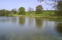 Anglers Reviews for Furnace Brook Fishery