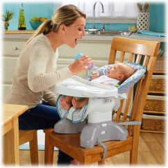 Fisher Price High Chair Seat Graco Elephant Spacesaver Morning Fog Chairs Bjv38