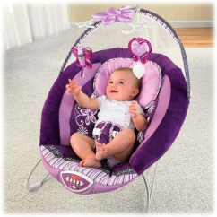 Bouncy Chair Weight Limit Hanging Leather Fisher Price Bouncer Sugar Plum Vibrating Brand New In Box V6414 | Ebay