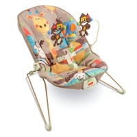 Fisher Price Exclusive Fun Park Bouncer with Calming ...