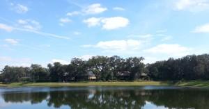 Tern Wood Pond, FishHawk Ranch, FishHawk Real Estate, FishHawk Homes For Sale