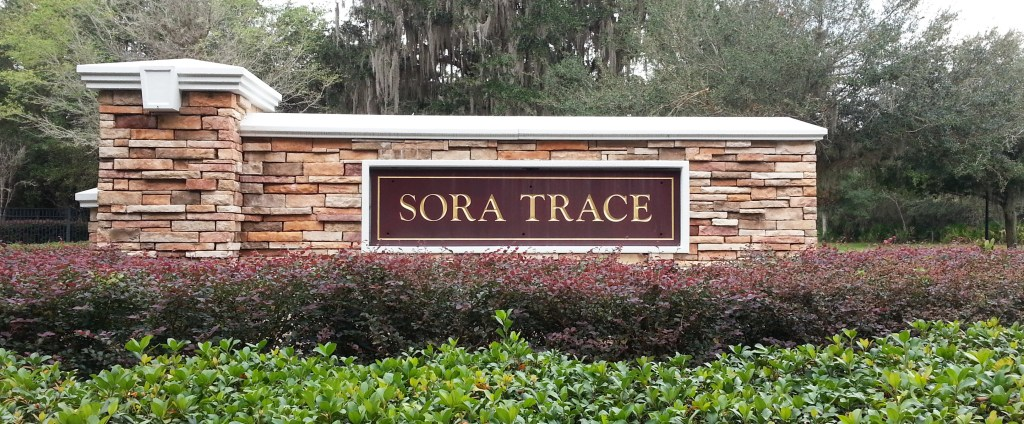 sora-trace