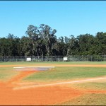 FishHawk's Very Own Newsome High School Has Been Named Hillsborough County's Elite Athletic Program