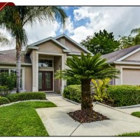 Great Pond View Home For Sale In The Heron Glen Subdivision Of FishHawk Ranch, FishHawk Ranch Home For Sale, FishHawk Ranch Real Estate, 5852 Heronrise Crescent Drive Lithia, Florida 33547