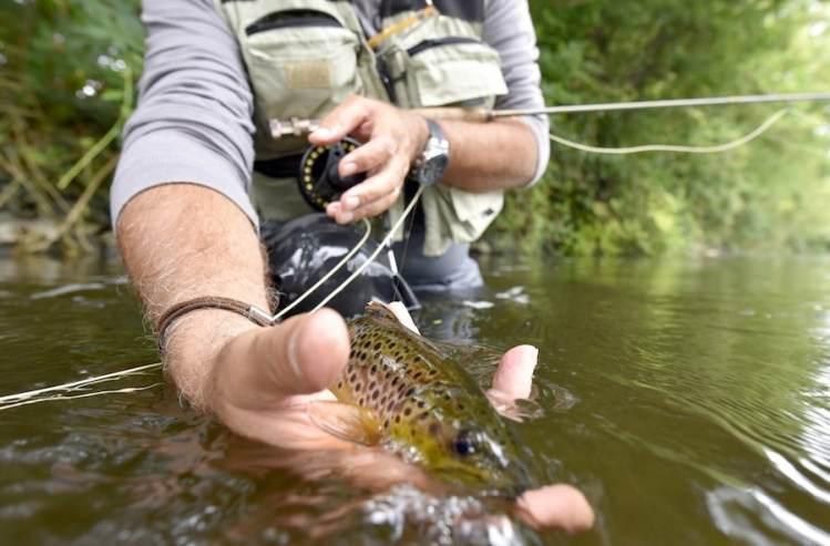 Do You Need Tippet For Fly Fishing Fishing Duo
