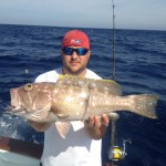 islamorada yellowedge grouper