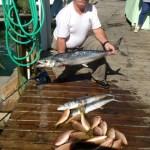 Islamorada Reef Fish
