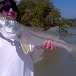 snook florida keys