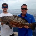 grouper Islamorada