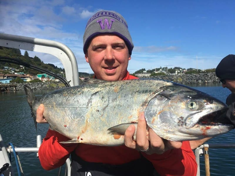King Salmon caught on Fish N' Chips Charters Kodiak Island Alaska
