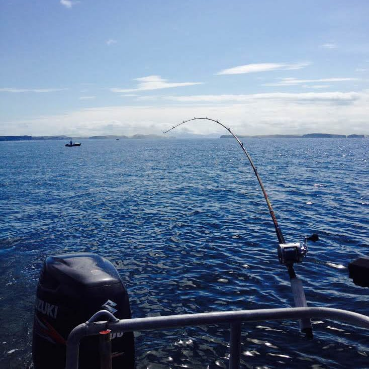 Trolling for King Salmon but caught 40lb Halibut - Fish N' Chips Charters  Kodiak Island, Alaska