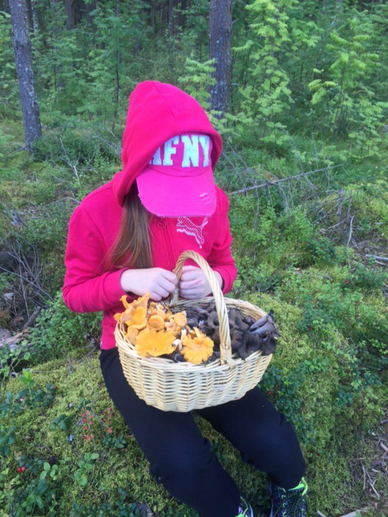 Sienestysapulainen löysi suurimman osan sienistä :)