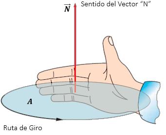 Vector Normal