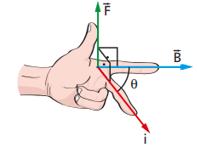 regla de la mano izquierda