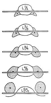 Fig. 2.8 - Penning, 2000