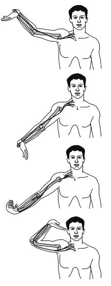 Validità degli ULNT per discriminare il dolore neuropatico