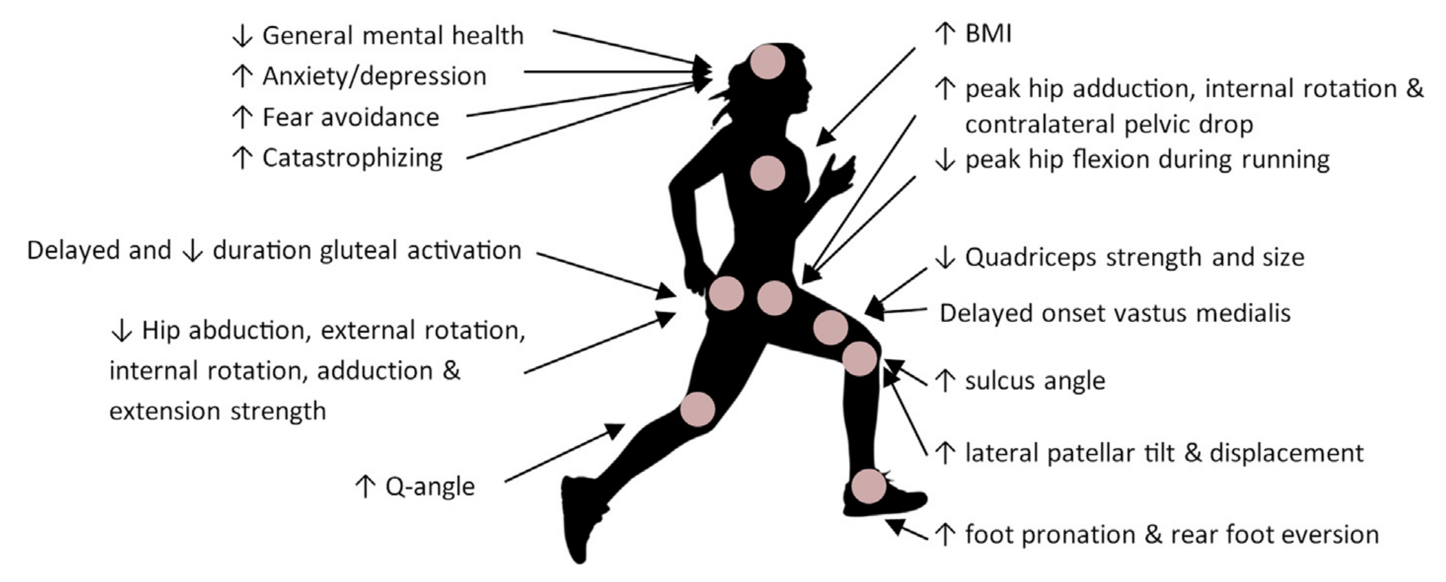 Gestione del dolore femororotuleo