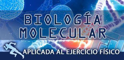 Biología molecular aplicada al ejercicio físico