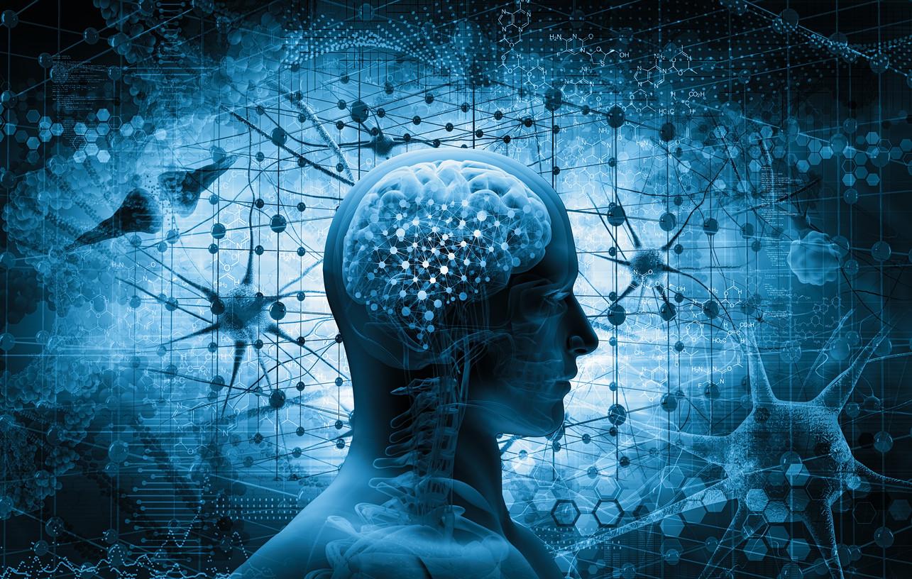 neuromarketing y fisiomuro