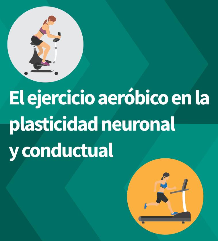 ejercicio-aerobico