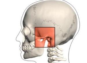 Articolazione Temporo mandibolare