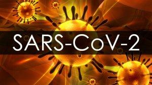 SARS-Cov-2 2019-nCoV Covid-19 Coronavirus