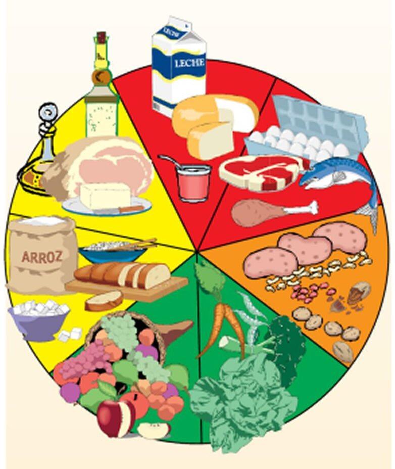 Círculo_con_siete_clasificaciones_de_diversos_alimentos_de_buenos_a_malos