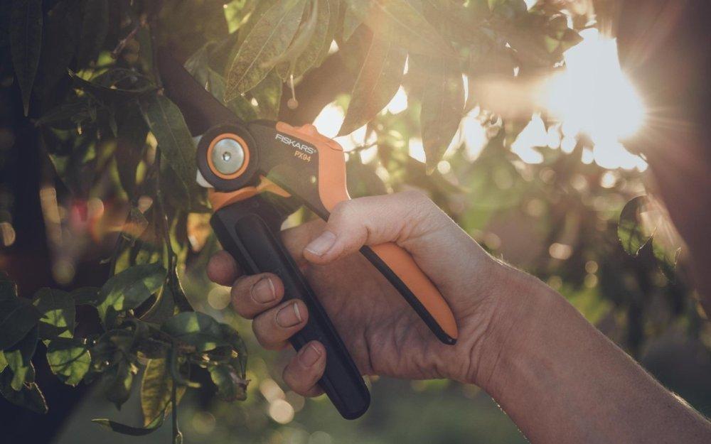 medium resolution of gardening