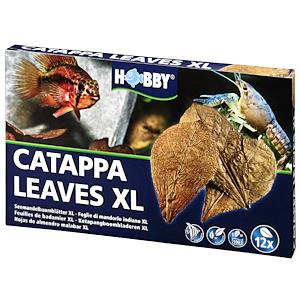 Hobby Capappa XL