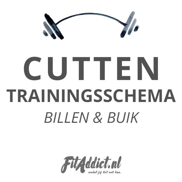 trainingsschema download