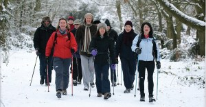 Nordic Walking in the snow